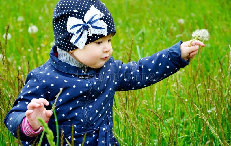 De leuke paardebloem van het babymeisje whith royalty-vrije stock afbeelding