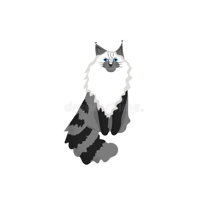 De leuke stijl van het karakterbeeldverhaal van kat Pictogram van de wasbeerras van Maine voor verschillend ontwerp stock illustratie