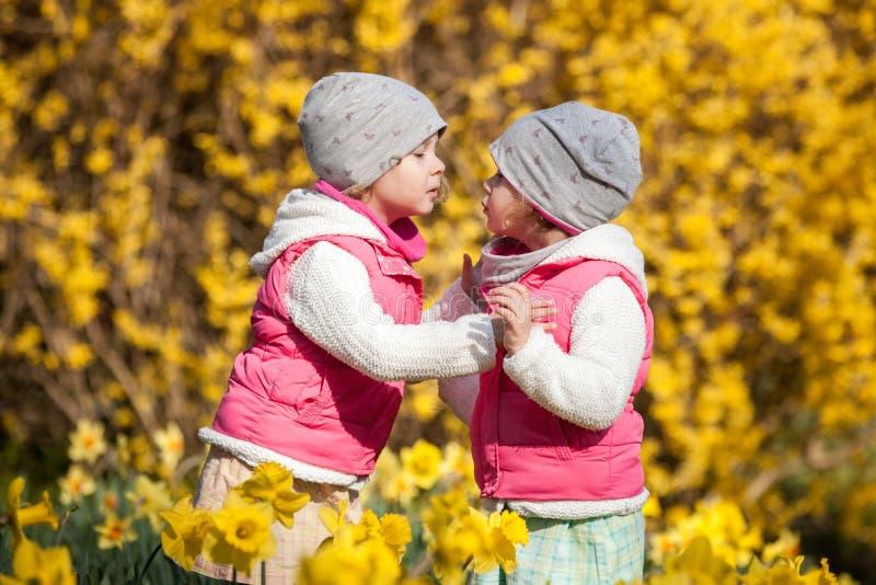 De leuke tweelingzusters, omhelzen en kussend op een achtergrondgebied met gele bloemen, gelukkige leuke en mooie zusters die pre stock afbeelding