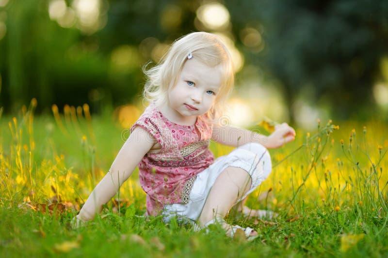 De leuke zitting van de meisjepeuter op het gras royalty-vrije stock foto