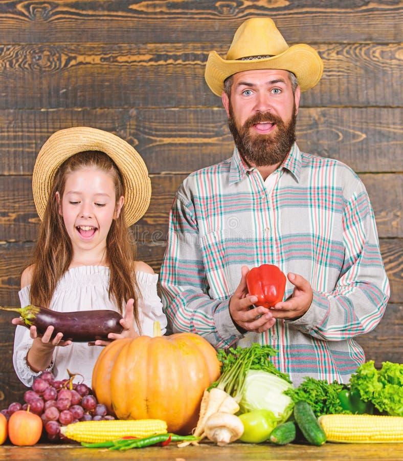 De levensstijl van de plattelandsfamilie Landbouwbedrijfmarkt met van het de Familielandbouwbedrijf van de dalingsoogst het festi royalty-vrije stock foto's
