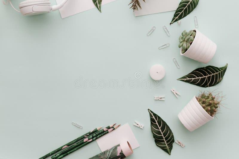 De levensstijlvlakte legt Achtergrond met bloempotten, groene bladeren, stock foto's
