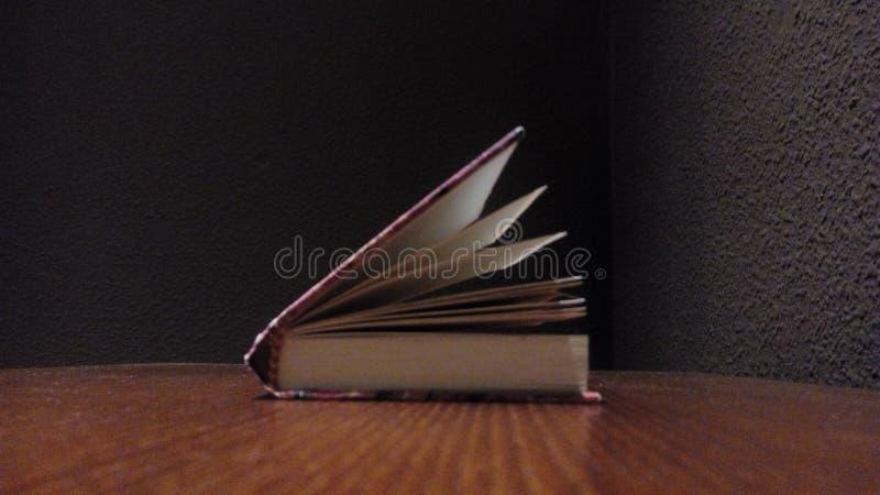 De lezing van het boeknotitieboekje stock afbeeldingen