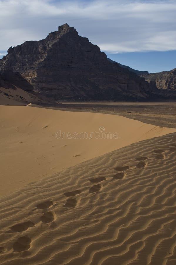 De Libische Sahara royalty-vrije stock foto