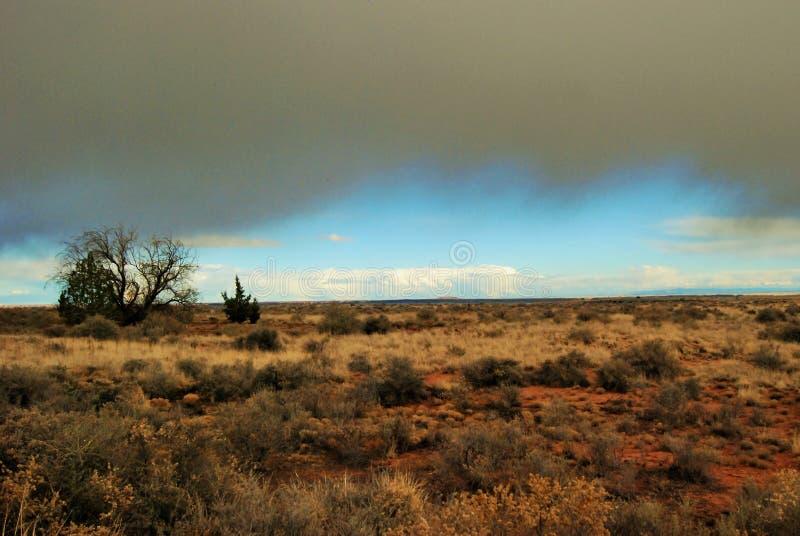 De lichtblauwe avondhemel gluurt onder de donkere wolken van een stortbui over de woestijn van noordelijk Arizona stock foto's