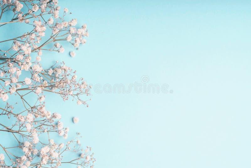 De lichtblauwe bloemenachtergrond met witte Gypsophila bloeien en de exemplaarruimte voor uw ontwerp stock foto's