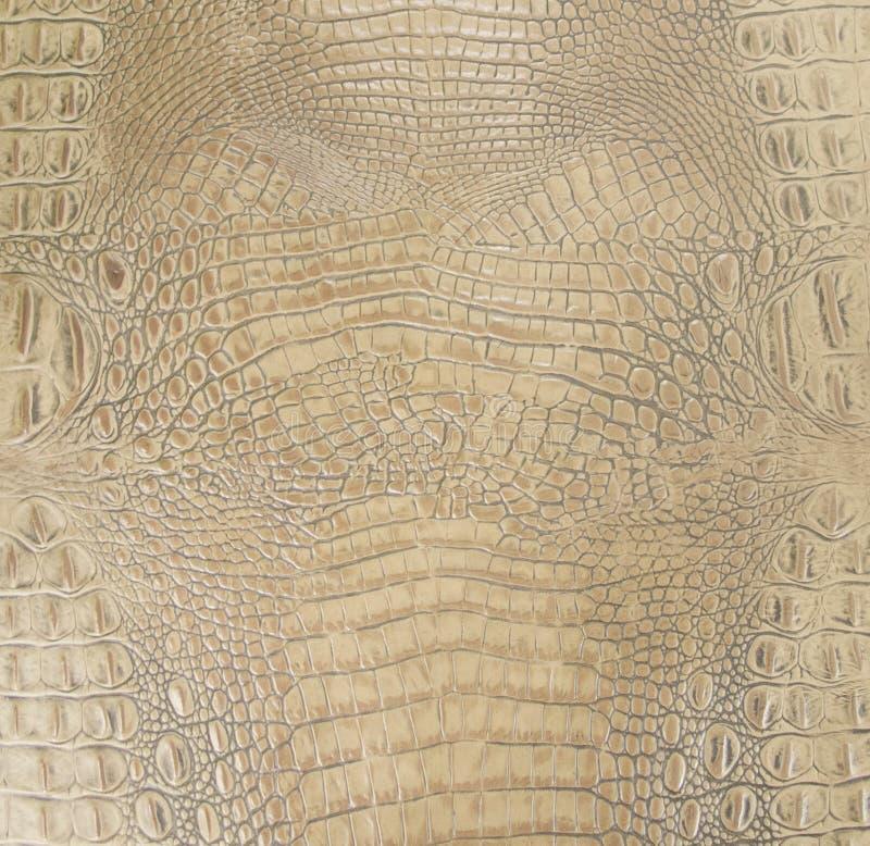 De lichtbruine Gekleurde In reliëf gemaakte Gator-Textuur van het Buikleer stock foto's
