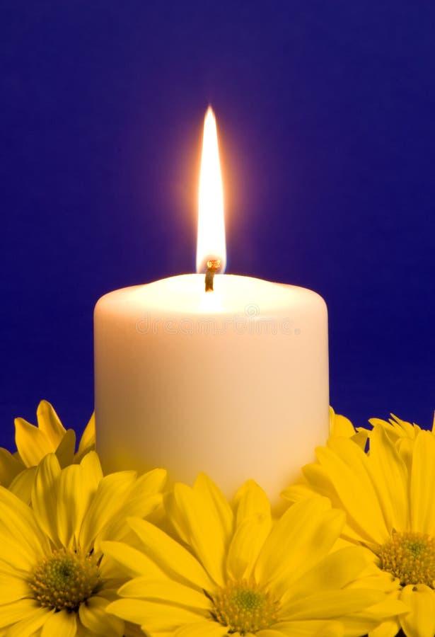 De Lichte en Gele Madeliefjes van de kaars stock afbeelding