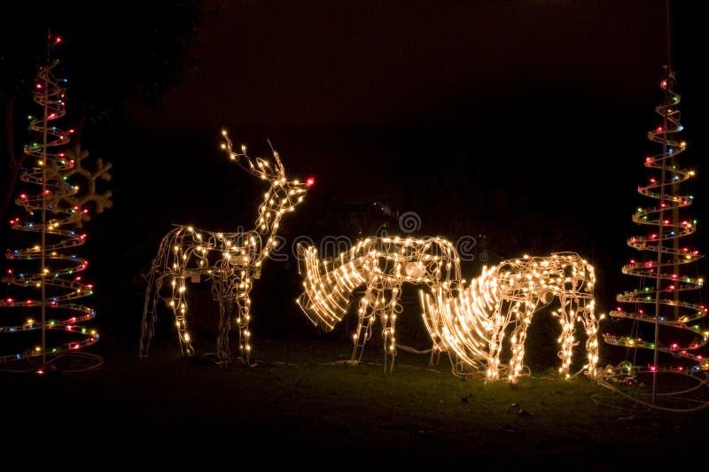 Kerstmislichten en decoratie royalty-vrije stock afbeelding