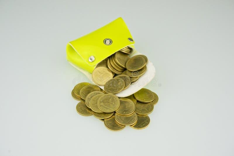 De lichtgroene zak heeft gouden muntstukstroom royalty-vrije stock fotografie