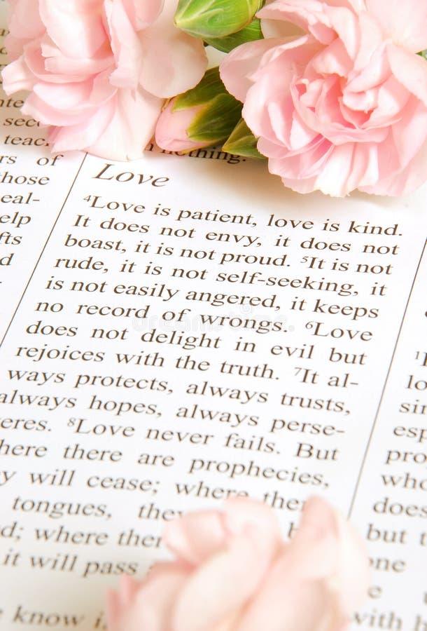 De liefde is royalty-vrije stock fotografie