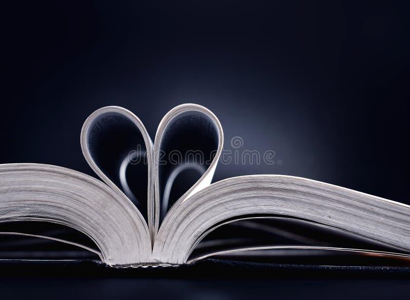 De liefde van het boek stock foto