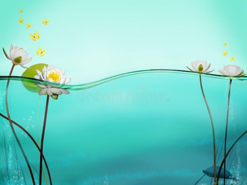 De lijn van het water stock fotografie