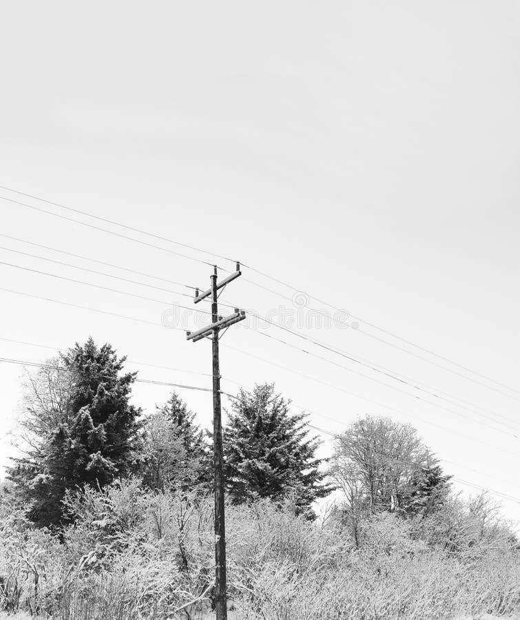 De lijnen van de macht in de winter royalty-vrije stock fotografie