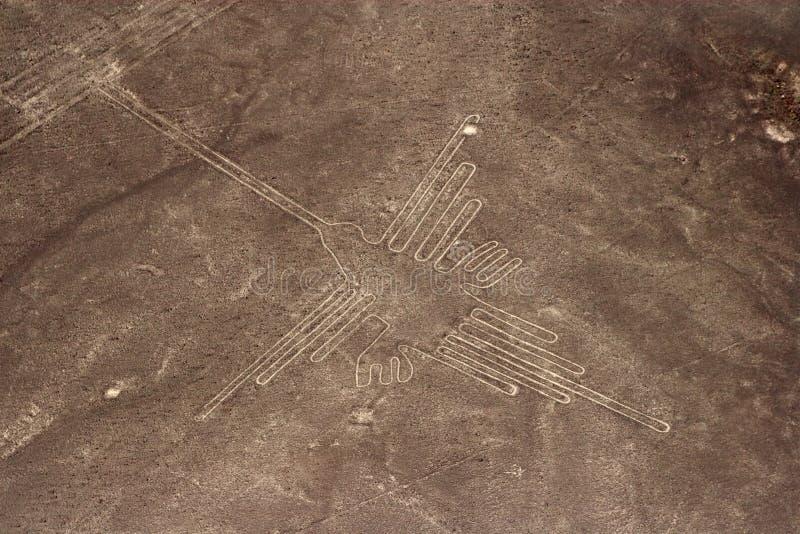 De Lijnen van Nazca stock fotografie