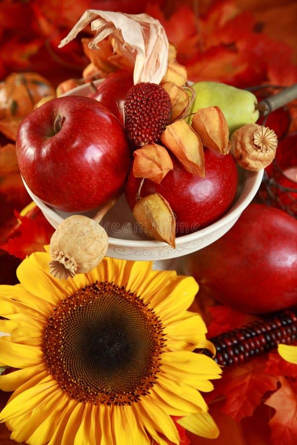 De lijst van de herfst stock foto's
