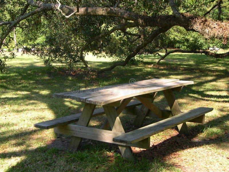 De Lijst van de Picknick van de binnenplaats royalty-vrije stock afbeeldingen