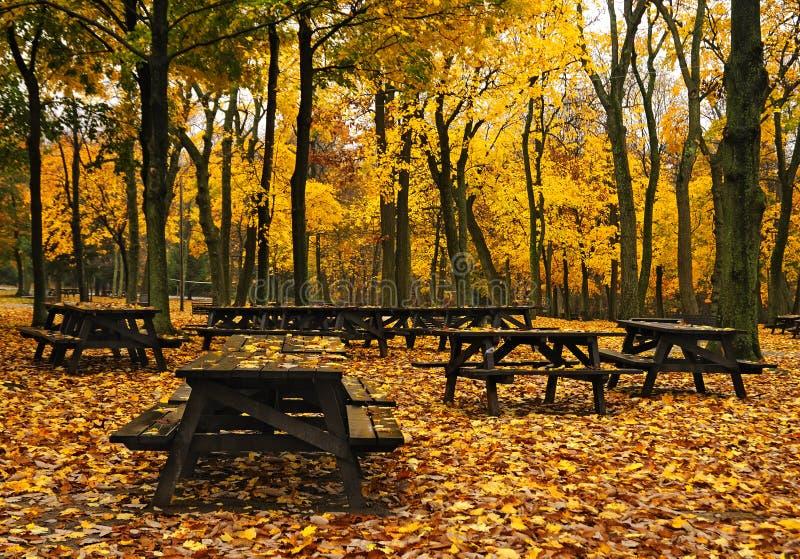 De Lijsten van de Picknick van de herfst stock fotografie