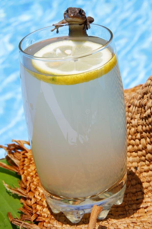 De Limonade van de zomer stock foto's