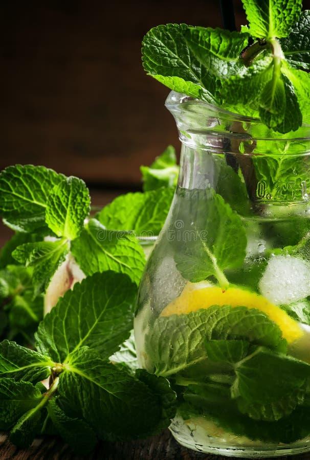 De limonade van de de zomercitrusvrucht met pepermunt, citroen, groen thee en ijs royalty-vrije stock afbeeldingen