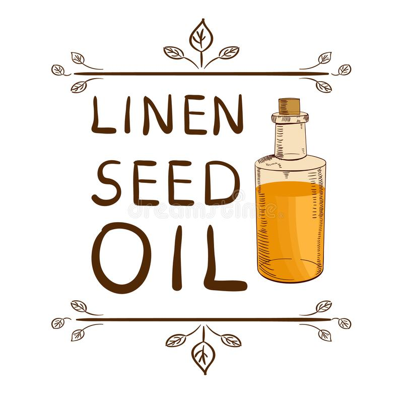 ` De linho do óleo de semente do ` e garrafa handdrawn com óleo Elemento tipográfico tirado mão Letras escritas do VETOR ilustração royalty free