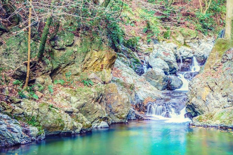 De Llittle-waterval in het Minoo-park, Osaka, Japan royalty-vrije stock foto's