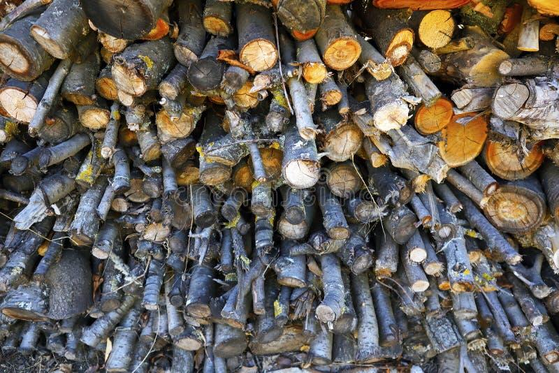 De logboeken en de gezaagde takken zijn gevouwen, brandhout voor een oven en een koperslager, logboeken voor een kebab stock foto