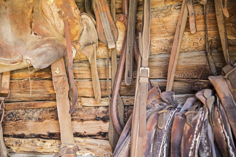 De logboeken van het het leerzadel van de paardkopspijker stock afbeeldingen