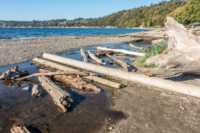 De Logboeken van Seahurstdirftwood stock afbeeldingen