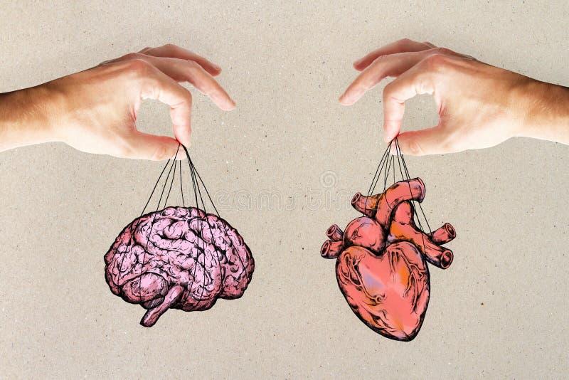 De logica en voelt concept met hart en hersenen stock fotografie