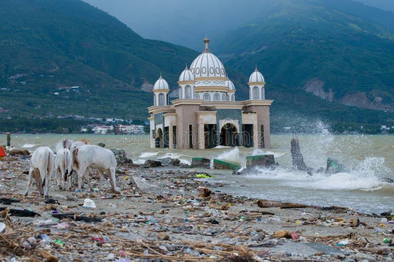 De lokale voorwaarde op Talise-strand na tsunami raakte op Palu, Indonesië 28 september 2018 stock fotografie