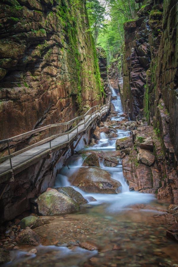 De loopbrug langs de Gootkloof streambed royalty-vrije stock afbeeldingen