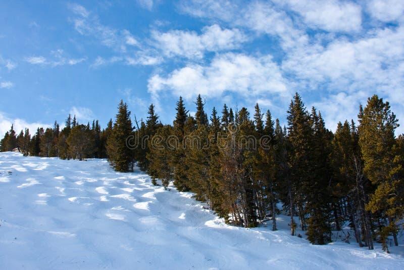 De Looppas van de Ski van het mogol royalty-vrije stock afbeelding