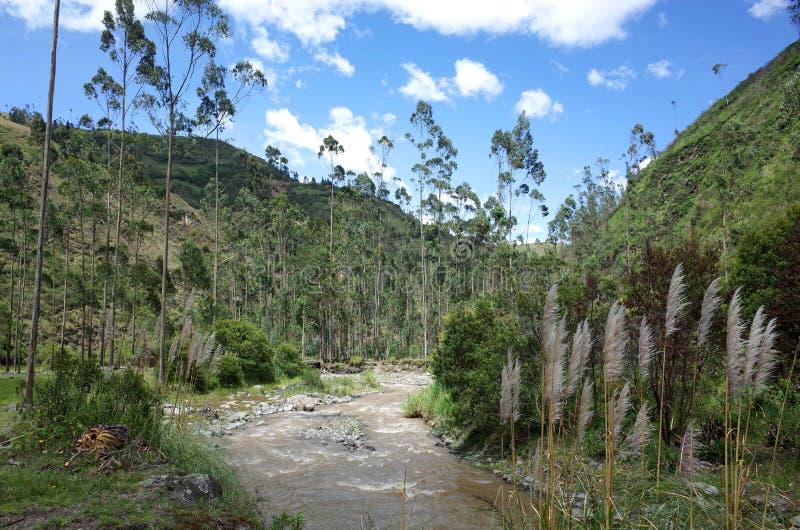De looppas van Riviertoachi door de Ecuatoriaanse Andes stock fotografie