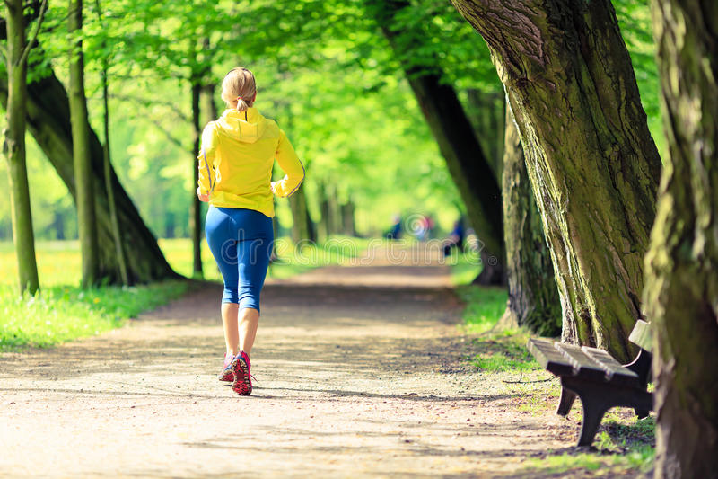 De lopende jogging van de vrouwenagent in groen de zomerpark en hout stock foto's