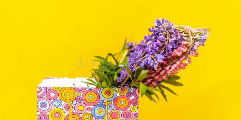 De loup dans la boîte colorée de cadeau Surprise de f?te Cadeau ?l?gant Boîte-cadeau avec les fleurs de loup Sur le fond jaune photo libre de droits