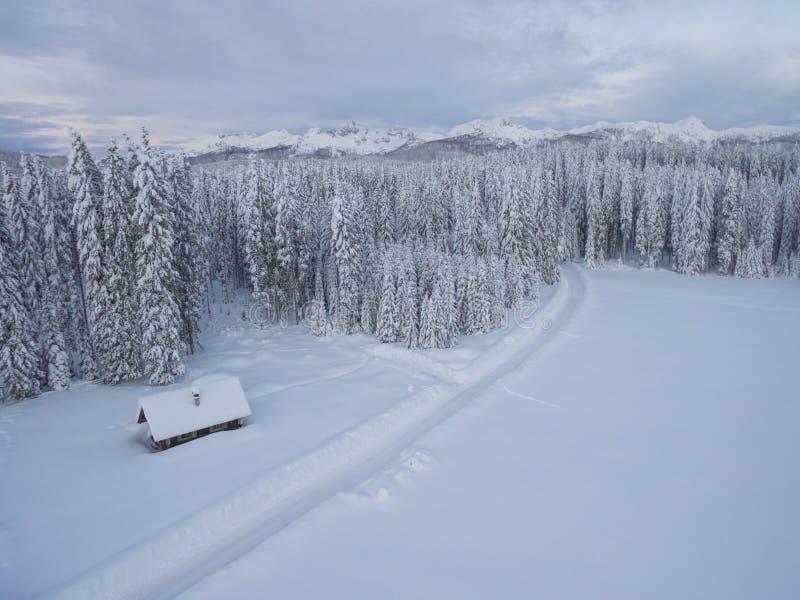 De luchtfoto van één blokhuis naast bos en de bergen behandelden in sneeuw achter het in de koude winter stock foto's