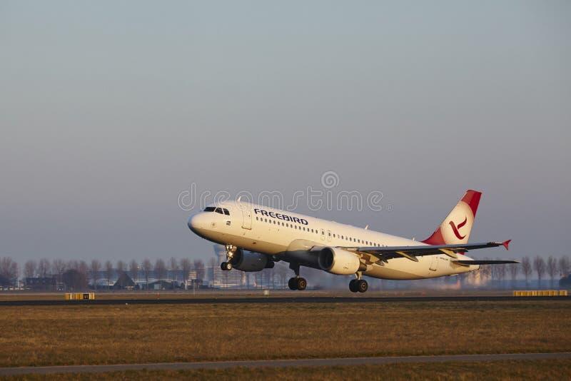 De Luchthaven Schiphol van Amsterdam - Freebird Airlines-de Luchtbus A320-214 stijgt op stock afbeeldingen