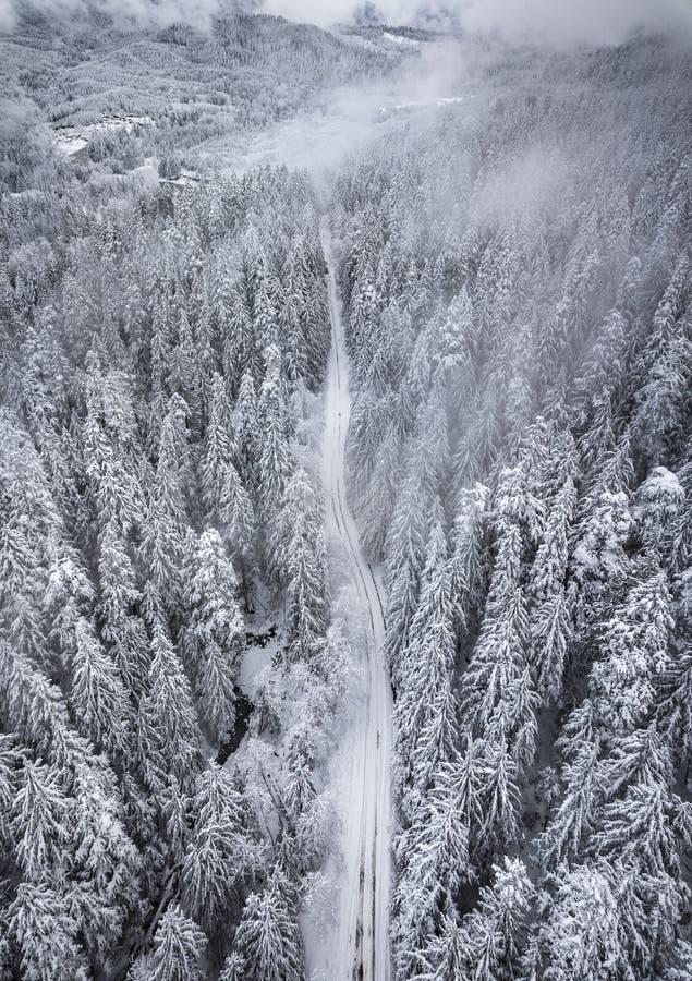 De luchtmening van sneeuw behandelde bomen en de sneeuw behandelde weg in m royalty-vrije stock fotografie
