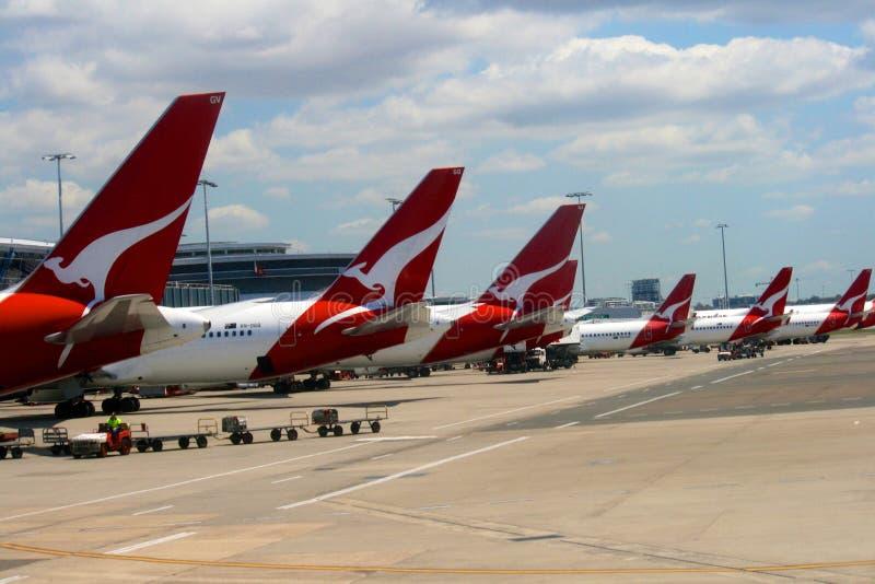 De Luchthaven van Sydney, de Luchtvaartlijnen van Qantas, Australië stock afbeelding