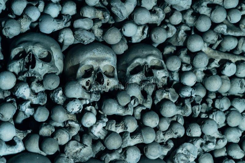 De mänskliga skallarna för trädet på benbakgrunden är i det mörka cet arkivfoto