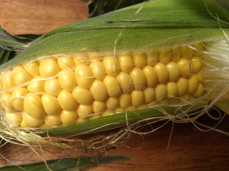 De maïskeuken van de graan gele korrel royalty-vrije stock afbeelding