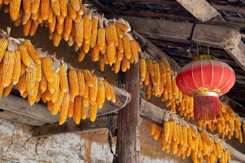 De maïskolven en de Chinese lantaarn hingen over de ingang van een traditioneel hmonghuis in de Provincie van Ha Giang, Noordelij royalty-vrije stock afbeelding