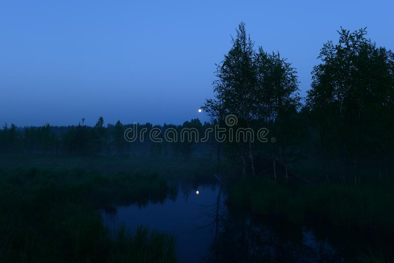 De maan van de de zomernacht in de blauwe hemel over de bosmaan overdacht de oppervlakte van het bosrivierwater stock foto's