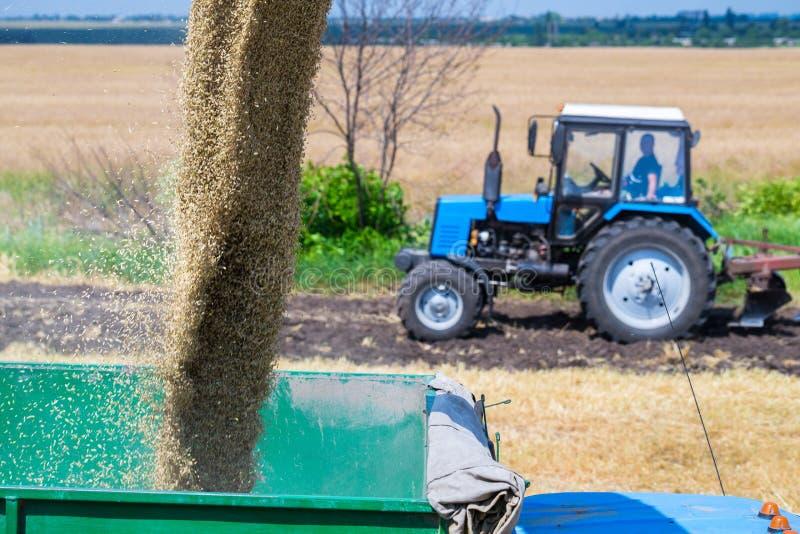De machine om korrelgewassen te oogsten - maaidorser in actie betreffende roggegebied bij zonnige de zomerdag Het Weergeven van c royalty-vrije stock afbeeldingen