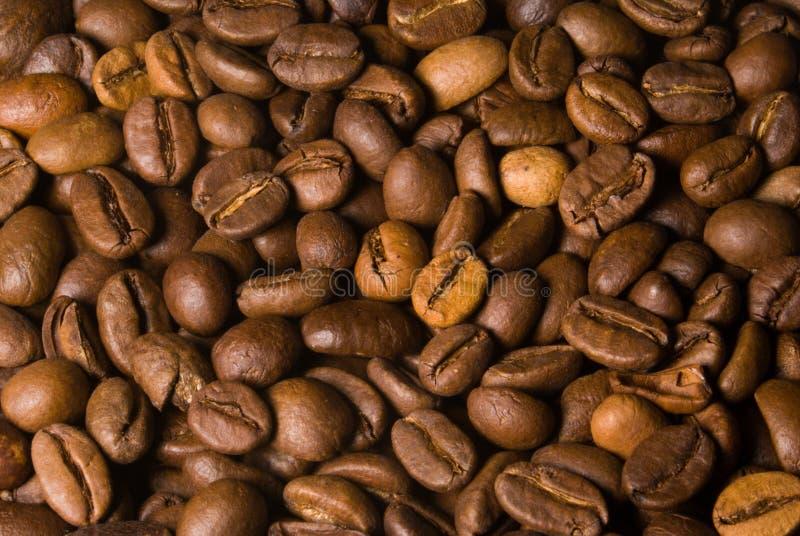 De macro van de de bonenmassa van de koffie royalty-vrije stock fotografie