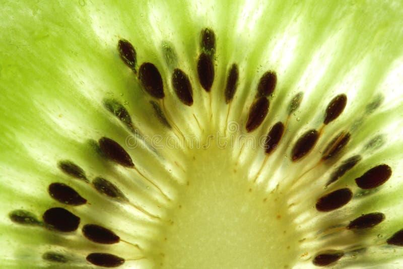 De macro van de kiwi stock foto