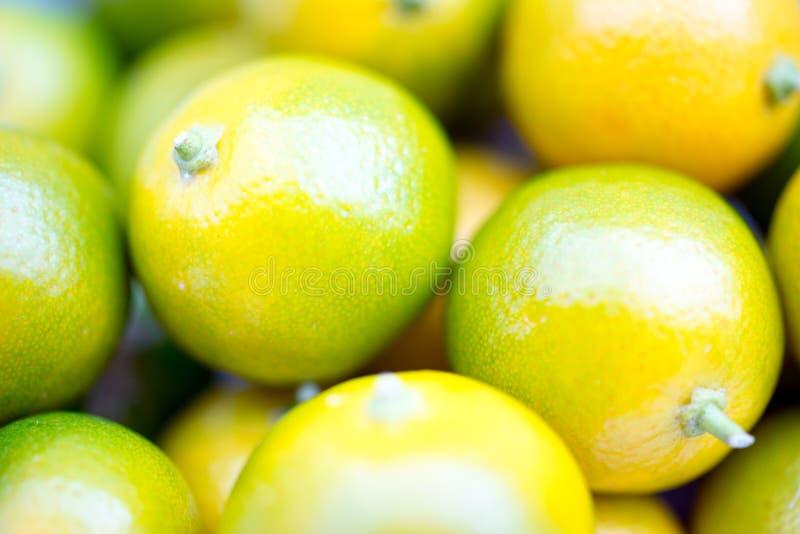 De Macro van het Calamondinfruit royalty-vrije stock foto's
