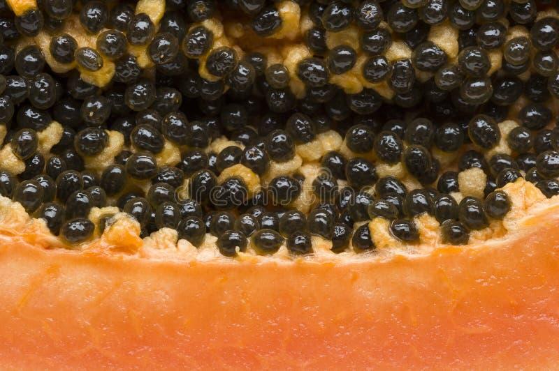 De macro van het papajafruit stock afbeelding