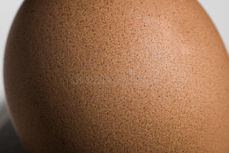 De macro van het textuurei stock foto